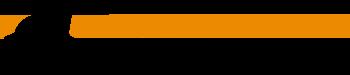 Ludosport U.S.A. Logo